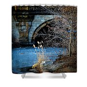 A Frozen Corner In Central Park Shower Curtain by Chris Lord