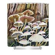 A Fungus Amongus Shower Curtain