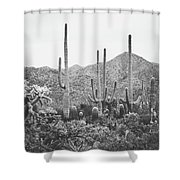 A Gathering Of Cacti Shower Curtain