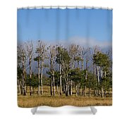 A Gathering Of Crows Shower Curtain