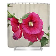 A Gentle Bloom Shower Curtain