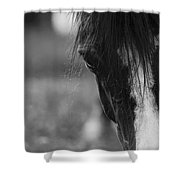 A Gentle Face Shower Curtain