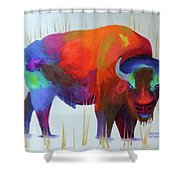 A Gentle Look Shower Curtain