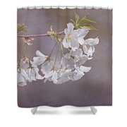 A Gentle Touch Of Spring Shower Curtain