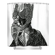 A Gibson Girl With Parasol Shower Curtain