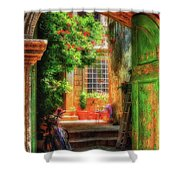 A Glimpse Shower Curtain