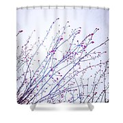 A Glimpse Of Colour Shower Curtain