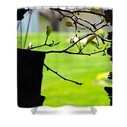 A Glimpse Of Spring Shower Curtain