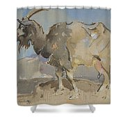 A Goat By Joseph Crawhall 1861-1913 Shower Curtain