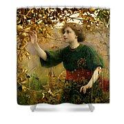 A Golden Dream Shower Curtain