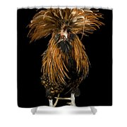 A Golden Polish Chicken Shower Curtain