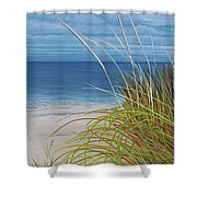 A Good Day For Beachcombing Shower Curtain