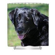 A Good Dog Shower Curtain