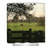 A Graveyards View. Shower Curtain