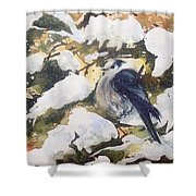 A Gray Jay Kind Of Day Shower Curtain
