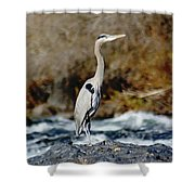 A Great Blue Heron At The Spokane River 2 Shower Curtain