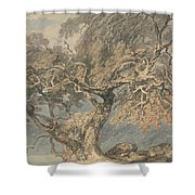 A Great Tree Shower Curtain