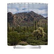 A Green Desert Forest  Shower Curtain