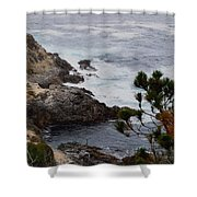 A Grey Day At Big Sur Shower Curtain