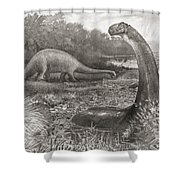A Group Of Brontosaurs, Or Thunder Shower Curtain
