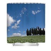 A Group Of Cypress Trees Dot A Tuscan Shower Curtain