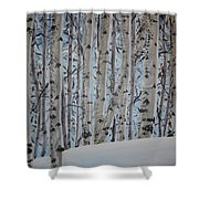 A Grove Of Aspens Shower Curtain