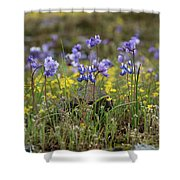 A Growing Crowd Shower Curtain