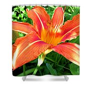 A Grrreat Tiger Lily Shower Curtain