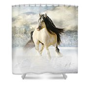 A Gypsy Winter Journey Shower Curtain