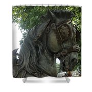 A Handsome Steed Shower Curtain