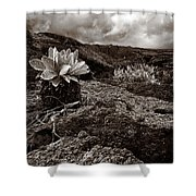 A Hard Existence - Sepia Shower Curtain
