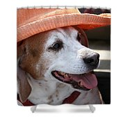 A Hat For Buddy Shower Curtain