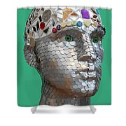 A Head Full Of Shattered Dreams Shower Curtain