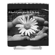 A Heart At Peace Shower Curtain