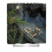 A Heart By The River Shower Curtain