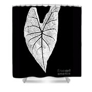 A Heart In Nature Shower Curtain
