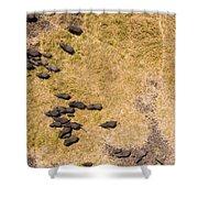 A Herd Of 100+ Elephants, Sw Corner Shower Curtain