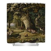 A Herd Of Stag And A Fawn In A Woodland Landscape Shower Curtain