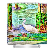 a heron is walking on a stair about the Grand Canal Shower Curtain