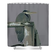 A Heron On Watch  Shower Curtain
