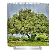 A Hill Country Moment Shower Curtain