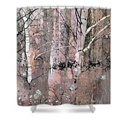 A Hint Of Pink Shower Curtain