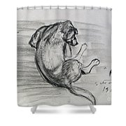 A Hippy Dog Shower Curtain