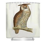 A History Of British Birds. Shower Curtain