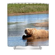 A Hot Day In The Hallo Bay Katmai National Park Preserve Shower Curtain