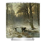 A January Evening In The Woods Shower Curtain