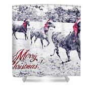 A Joyful Christmas Shower Curtain