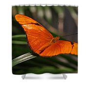 A Julia Butterfly I Shower Curtain