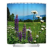 A June Day In Heaven Shower Curtain by Kendall McKernon