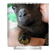 A Kiss For The Kid Shower Curtain